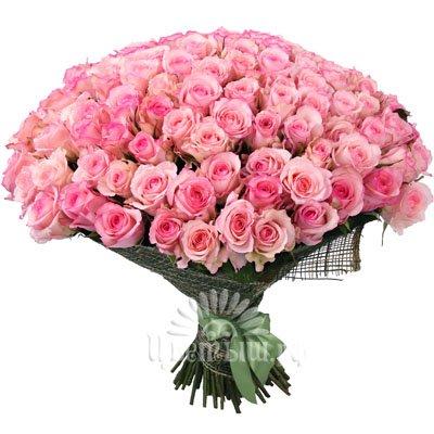 101 роза розовая купить